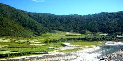 Arunachal P