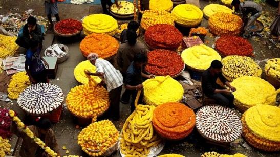 bangalore flower market details, flower markets of india,
