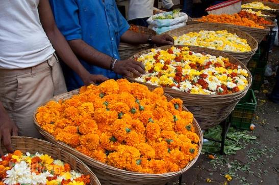 mumbai flower market in dadra. cheap flights to mumbai