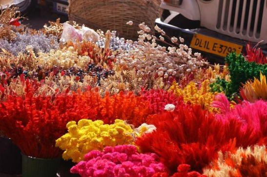 Ghazipur delhi flower market details, lowest airfare to Delhi
