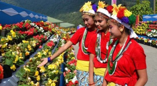 winter festivals of sikkim, sikkim festivities