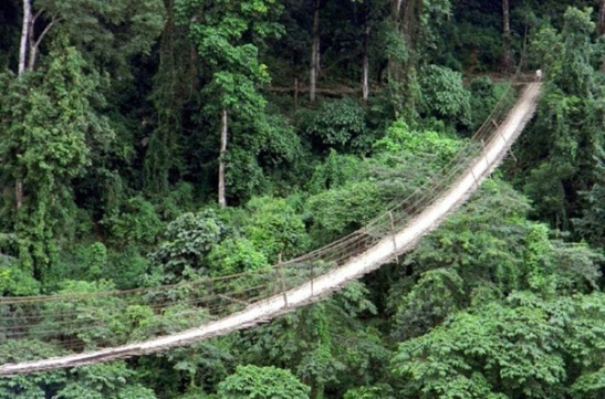 hanging bridges in India, adventure travel in India