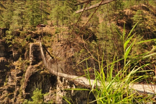 Arunachal Pradesh hanging bridges, adventure in arunachal pradesh